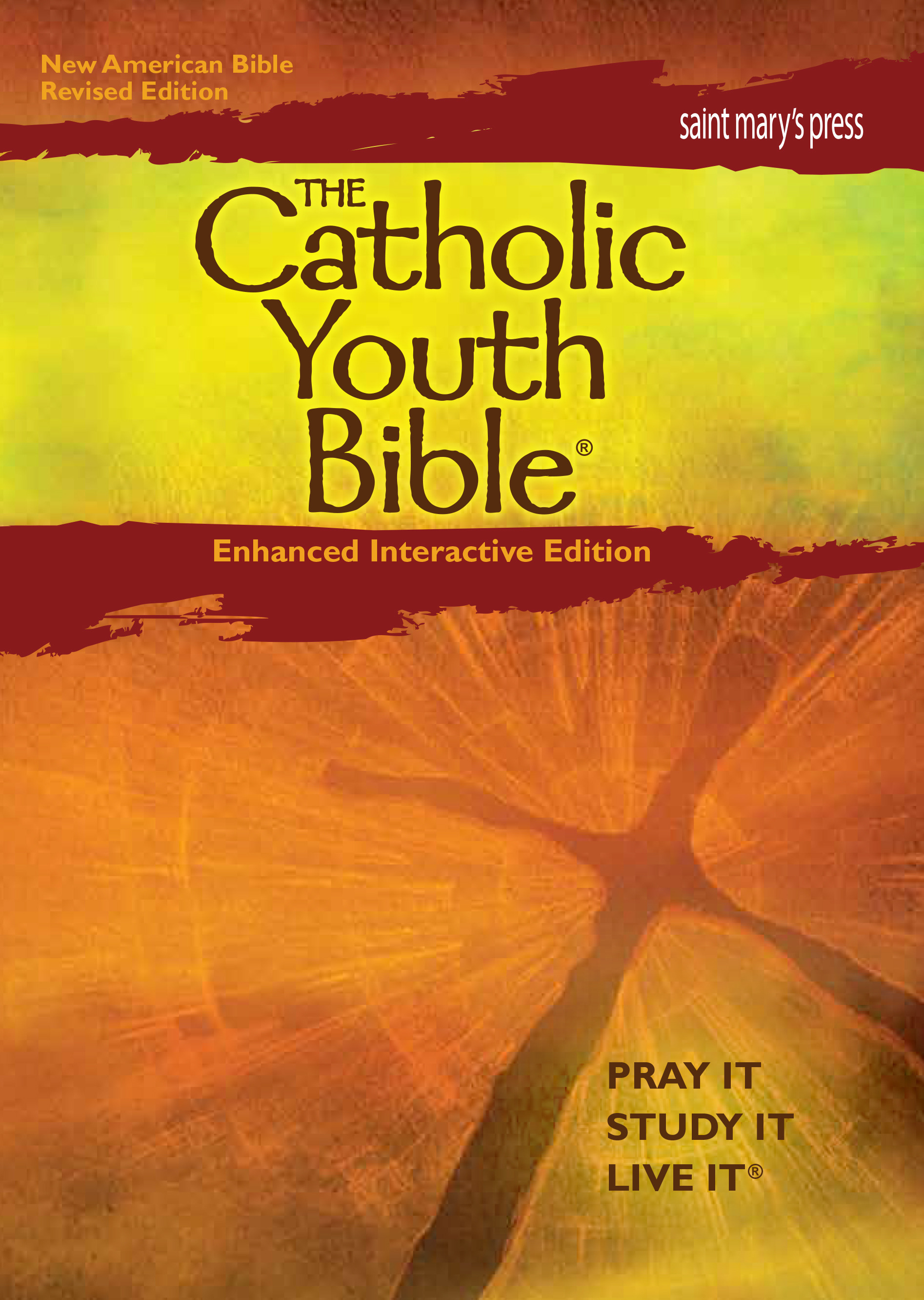 The Catholic Youth Bible - NAB interactive edition (1 Year Access)