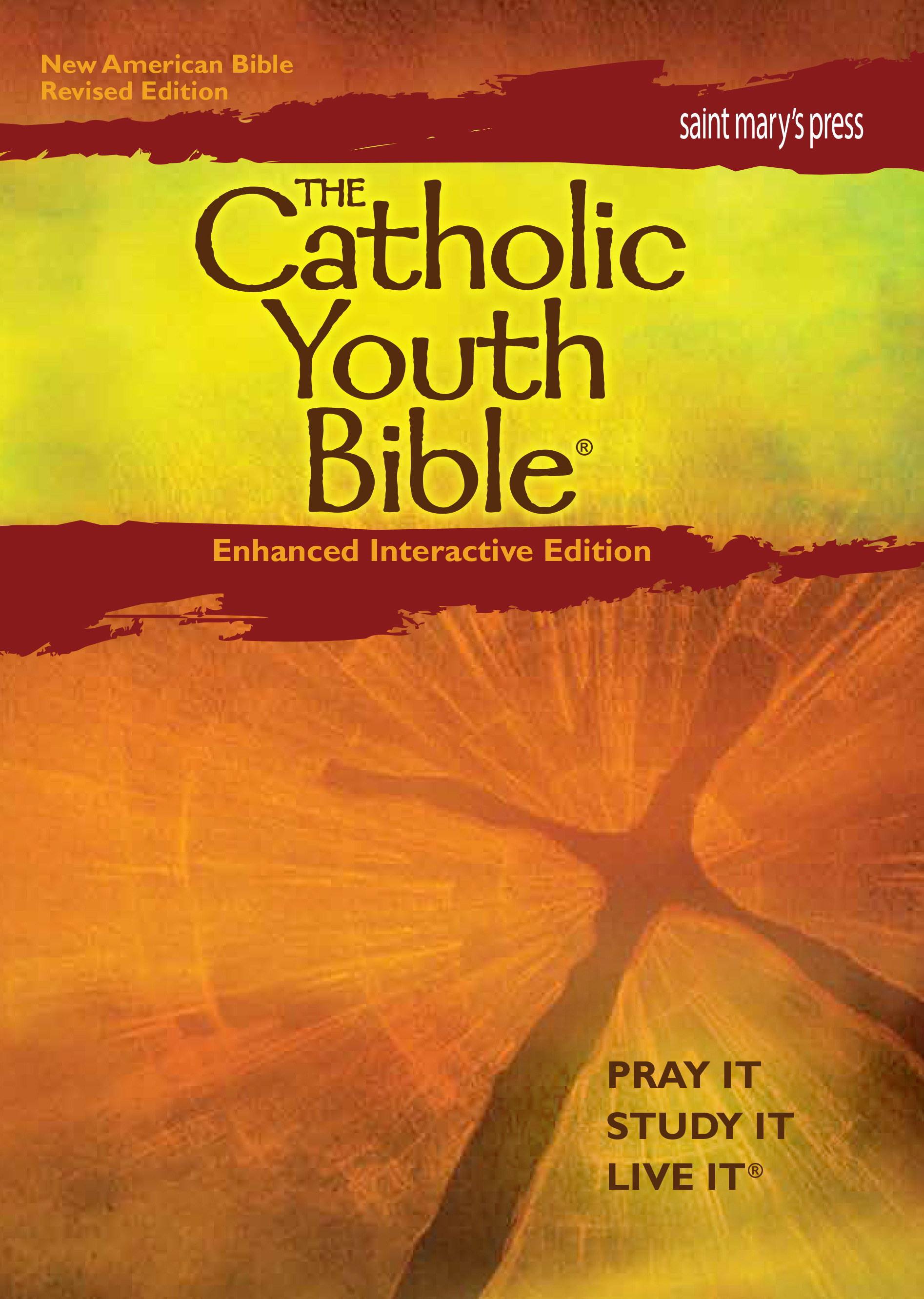 The Catholic Youth Bible®, Enhanced Interactive Edition (NABRE)