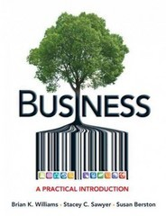 Business: A Practical Introduction ebook (1 Year Access)
