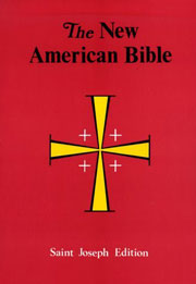 St. Joseph New American Bible: Large Type Paperback