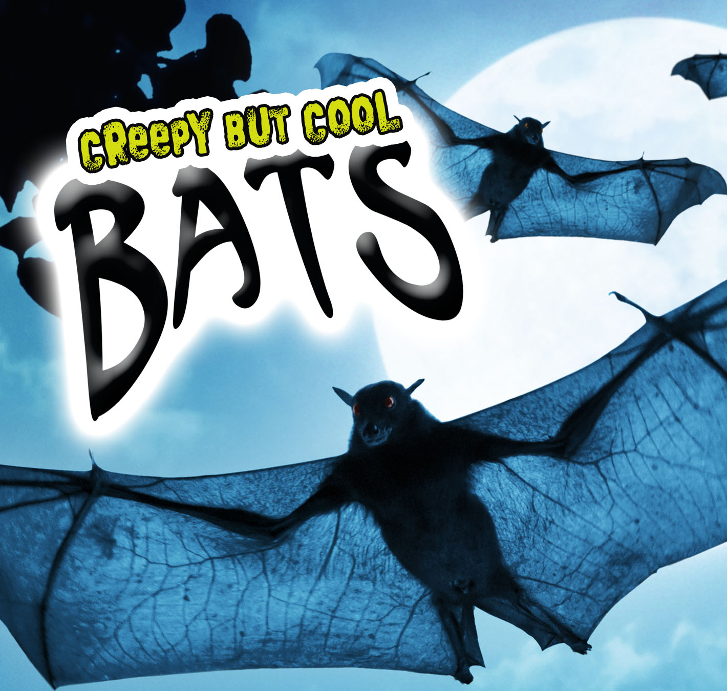 Creepy But Cool Bats
