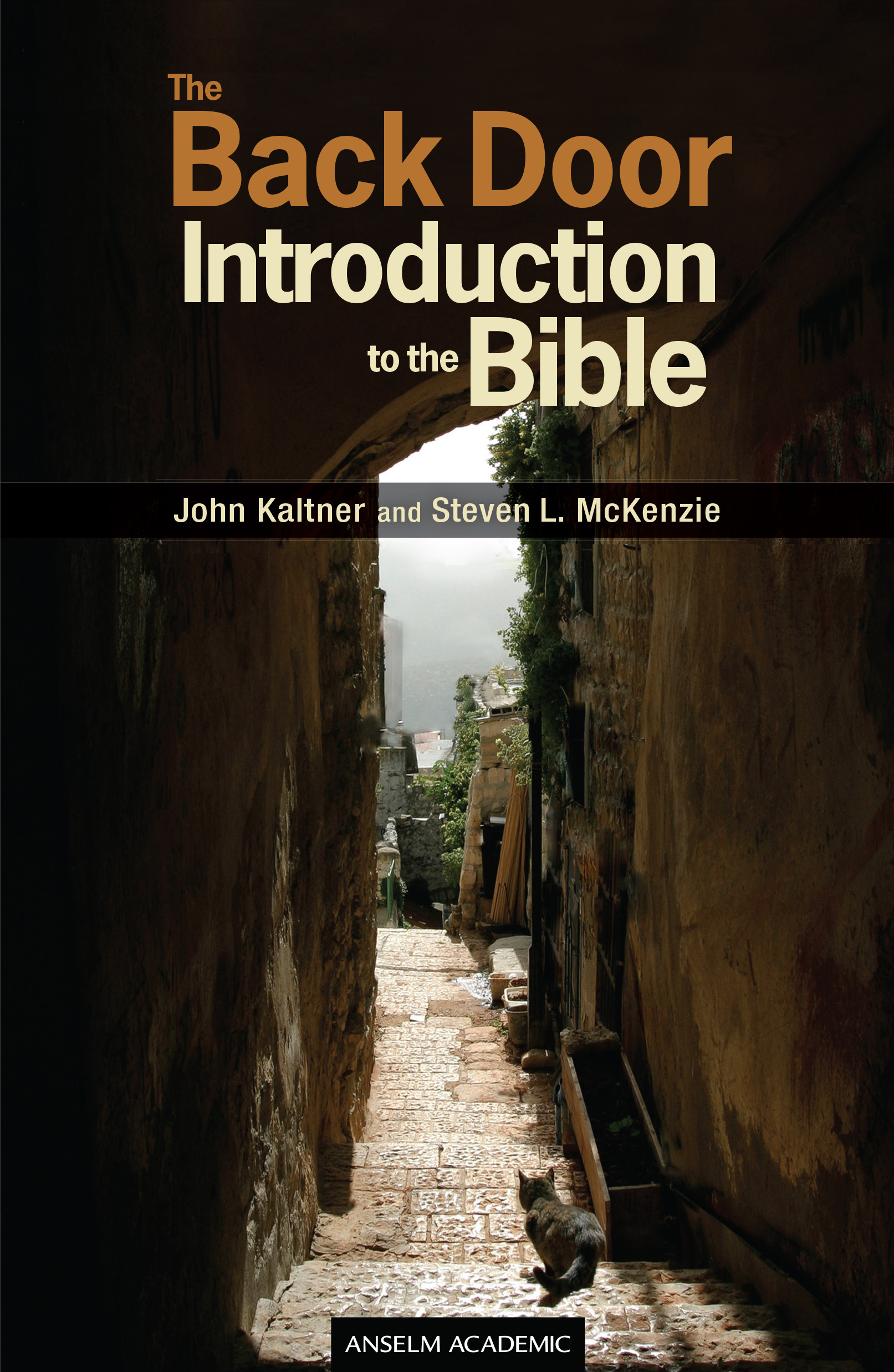 The Back Door Introduction to the Bible