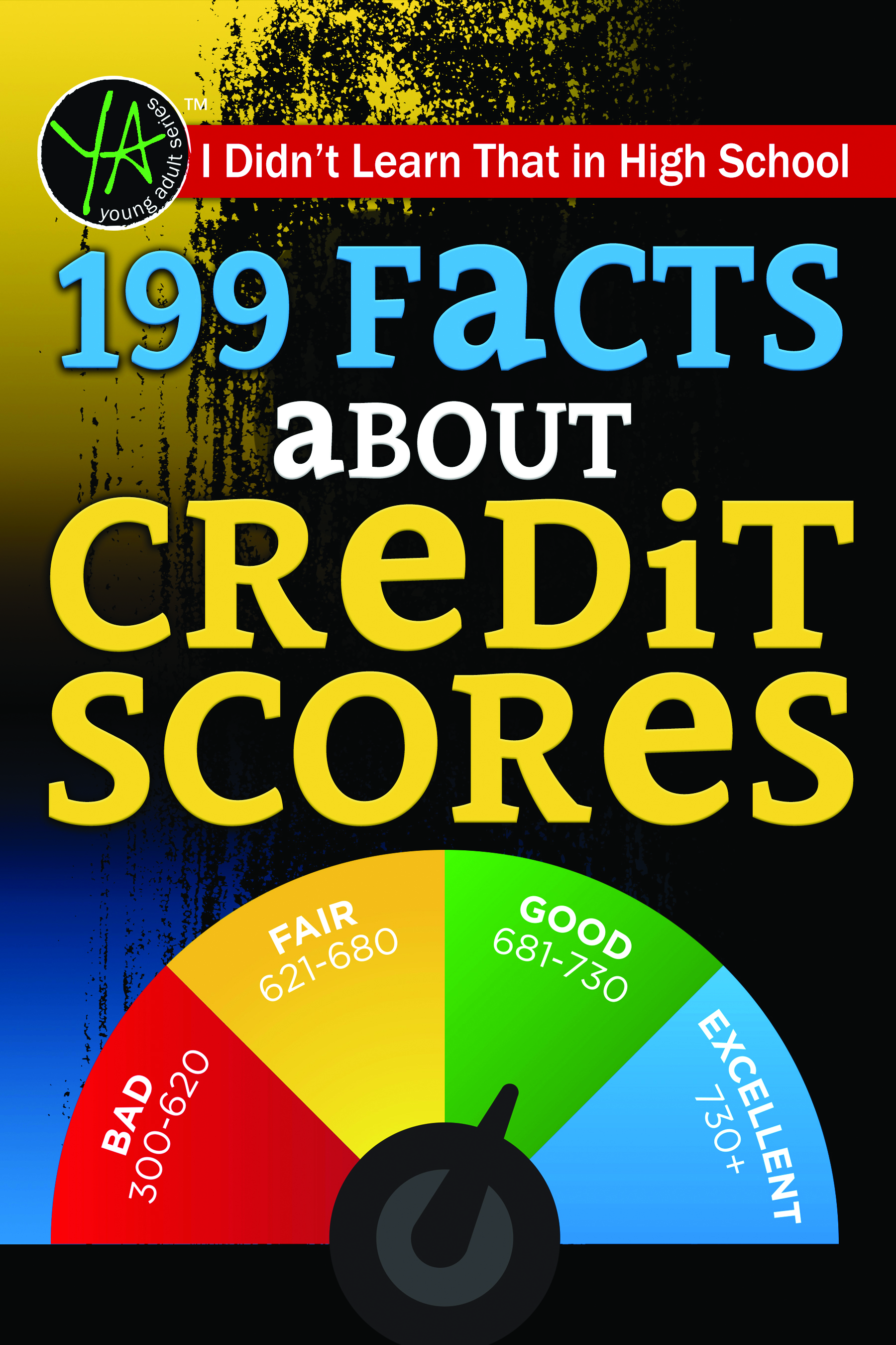 I Didn't Learn That in High School 199 Facts About Credit Scores