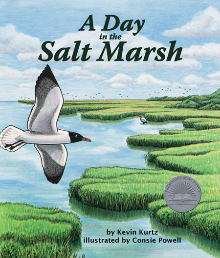 Day in the Salt Marsh, A